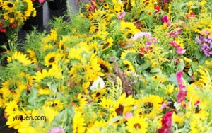 flower in china yiwu international trade city